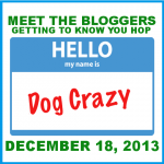 """Meet the Bloggers"" Blog Hop Coming December 18th"