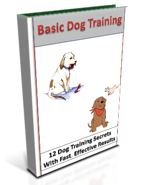 Basic Dog Training Guide